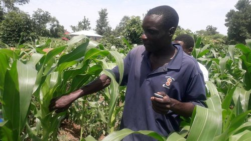 Technology hope for African farmers