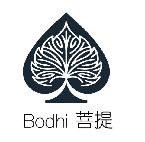 Bodhi raises $10m ICO