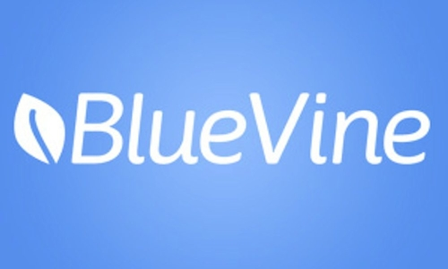 BlueVine takes in $130 mln