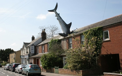 Sharknado: Could the 'Oxford Shark' be Britain's strangest heritage asset?