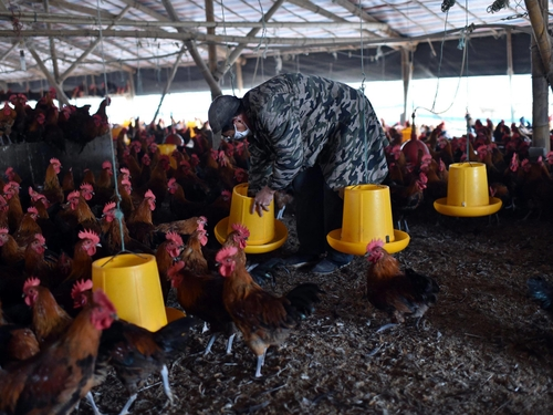Lack of effective antimicrobials 'is as serious as a sudden and deadly disease outbreak'