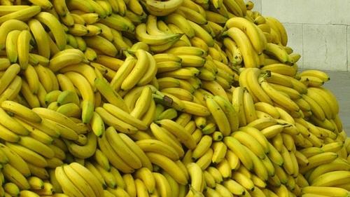 Bent Banana's OK by You?