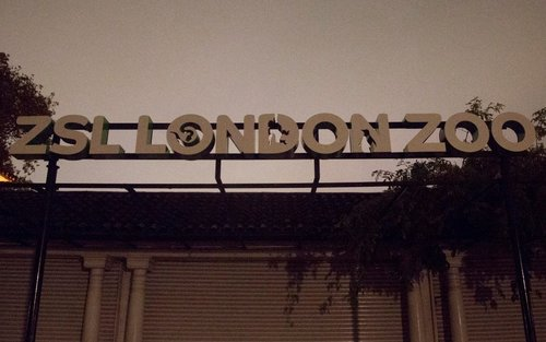 London Zoo fined £40k for H&S failings