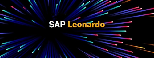 Is SAP's newest innovation offering customers all the gear with no ideas?
