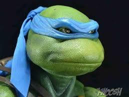 What is Leonardo?