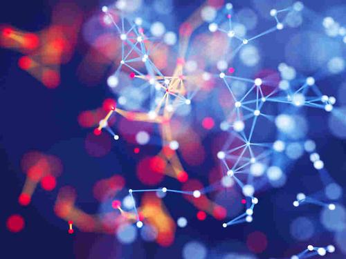 The Big Idea Behind Big Data