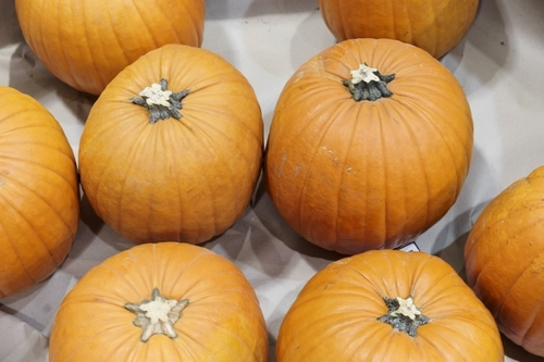 5 business bogeymen to banish this Halloween