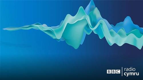 Declan Goodwin yn siarad am GDPR a Brexit ar BBC Radio Cymru