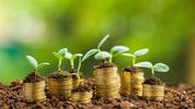 Circular Economy – bringing value to sustainability