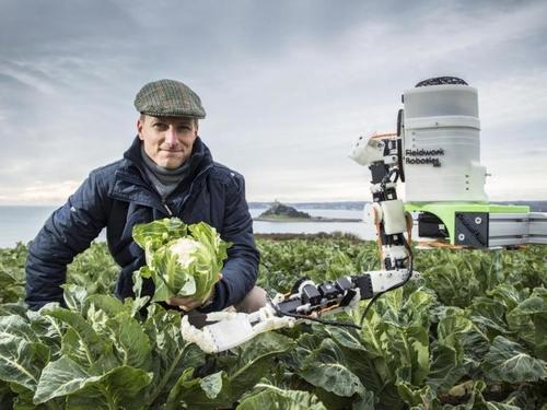 Robots augment human fruit pickers