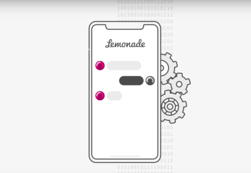 Lemonade wants to rewrite the insurance policy itself