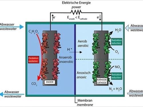 Wenn aus Klärschlamm wertvolle Energie und Wasserstoff werden