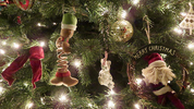 Christmas Parties: Yule Need Caution!