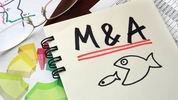 The winding road to M&A success