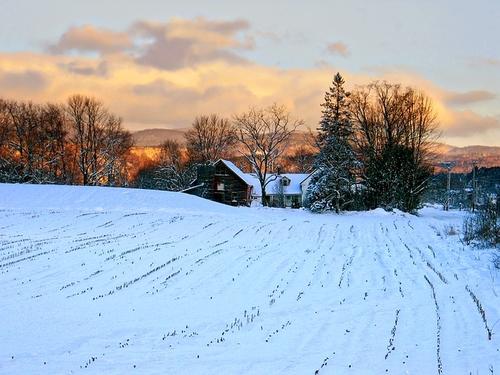Vermont's onshore reinsurance alternative?