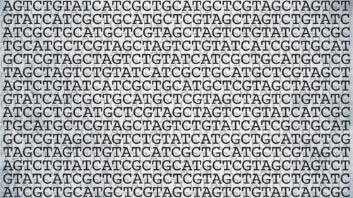 Gene editing gets more and finer tools