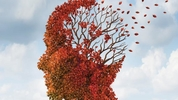 The forgetting curve: what is it, and how do we combat it?