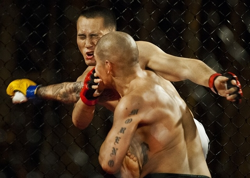 TKO for MMA Fighter's False Ad Claim Against Retailer Based on Its Form 10-K