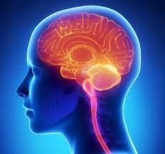 Neurology hotline for GPs: Primary and Secondary Care working better together