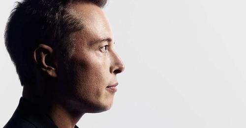 Elon Musk Factor