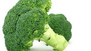 Giant broccoli leads to EPO patent revocation