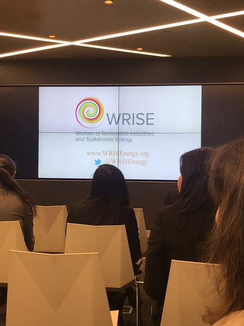 WRISE up! Celebrating Women's Leadership in Renewables, Energy Efficiency and Energy Storage.