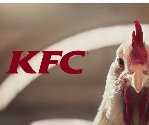 Playing chicken: taking risks with edgy advertising