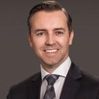 Michael  Solowan, Partner, Brownlee LLP